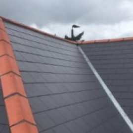Slate Roofing London